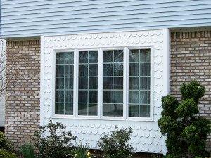 window photo 2